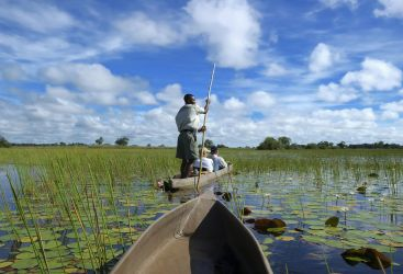 Botswana - Step outside your comfort zone on